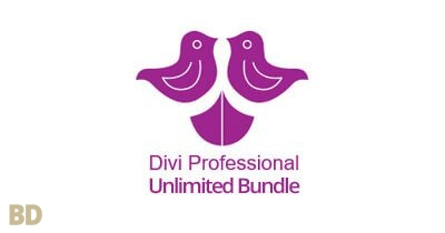 Divi Professional Unlimited Plugin Bundle