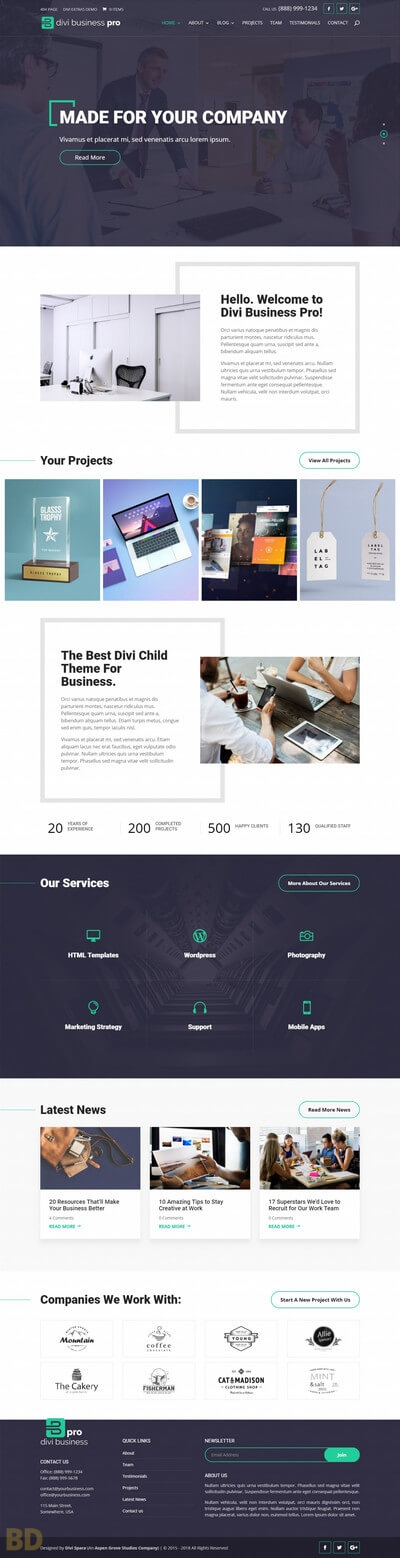 Divi Business Pro Child Theme Long