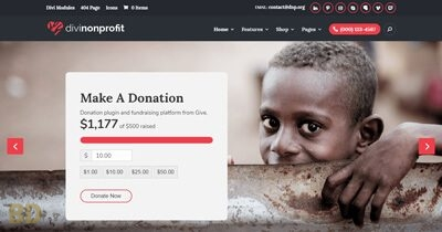 Divinonprofit Child Theme