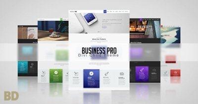 Business Pro Bdc