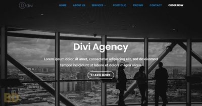 Divi Agency Diviextended