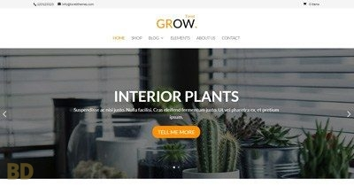 Grow Toretthemes
